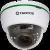 TSi-Dle2FP (4) Tantos Видеокамера IP, купол 2Мп,ИК,улич